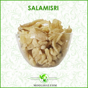 Salamisri
