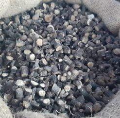 Black Musli
