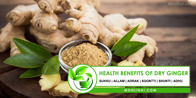 Health Benefits of Dry Ginger