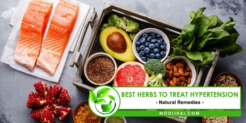 Best Herbs to Treat Hypertension